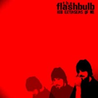 Flashbulb-Red-Extensions-of-Me