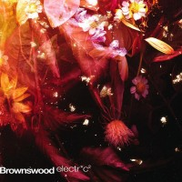 Brownswood Electric 2