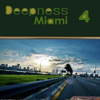 Deepness Miami 4
