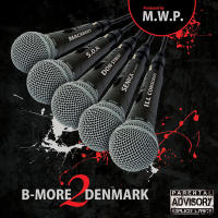 B-More2Denmark