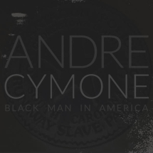 Black Man in America