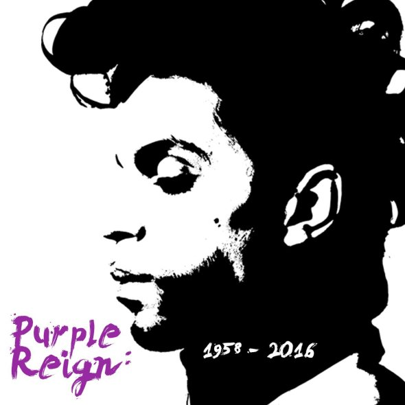 purple reign square profile